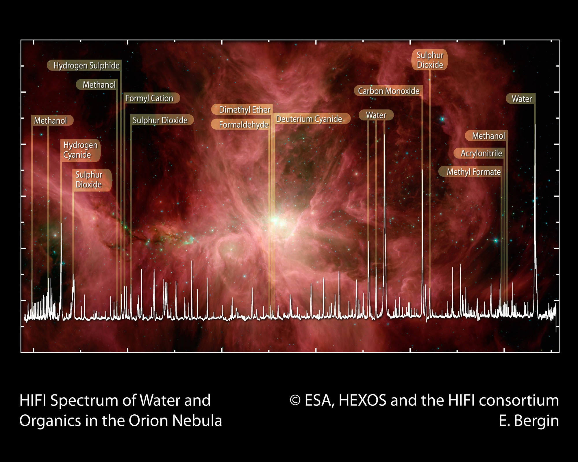 HIFI spectral scan of Orion